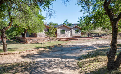 Oracle Single Family Home Active Contingent: 545 N Bonito Drive