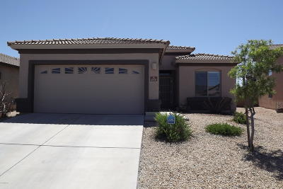 Single Family Home Active Contingent: 10576 S Jared Lane
