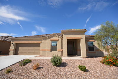 Marana Single Family Home For Sale: 8822 W Saguaro Skies Road