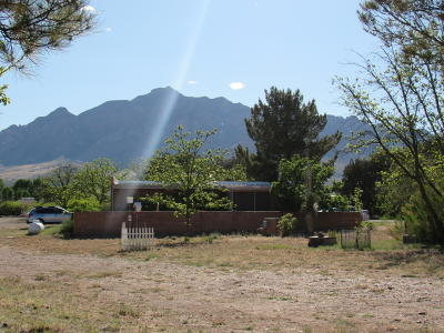 Cochise County Single Family Home For Sale: 152 W Portal Road