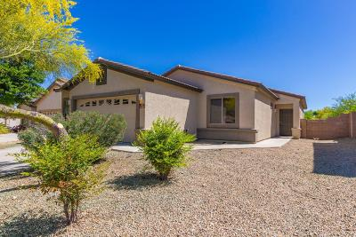 Pima County, Pinal County Single Family Home Active Contingent: 17607 S Green Willow Place