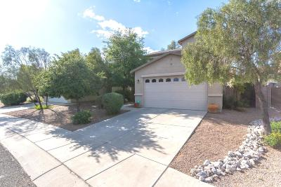 Tucson Single Family Home Active Contingent: 1040 W Sea Star Drive