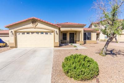 Single Family Home Active Contingent: 10660 S Silverbluff Drive