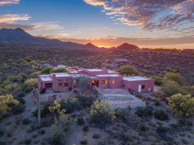 Tucson Single Family Home Active Contingent: 5631 W Placita Acantilada
