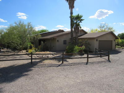 Tucson Single Family Home For Sale: 8021 N Padova Place