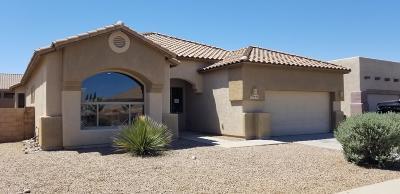 Tucson Single Family Home For Sale: 7951 W Hawk Eagle Court