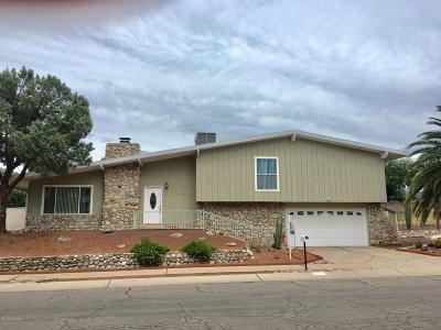 Tucson Single Family Home For Sale: 9221 E Palm Tree Drive