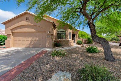 Pima County, Pinal County Single Family Home For Sale: 10519 E Bishop Lane