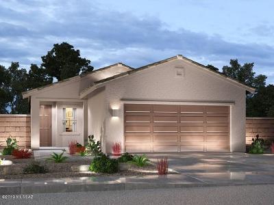 Sahuarita Single Family Home For Sale: 650 N Tree Mist Lane