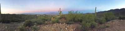 Tucson Residential Lots & Land For Sale: 6945 W Wasson Vista Drive