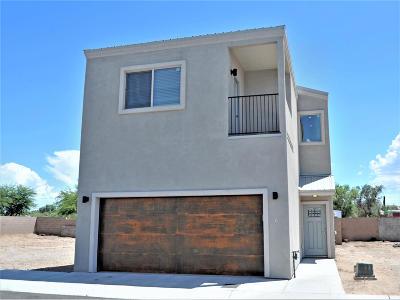 Tucson Single Family Home For Sale: 156 E Stone Court