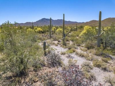 Tucson Residential Lots & Land For Sale: 9595 W Rudasill Road