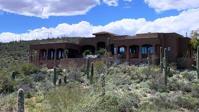 Pima County Single Family Home For Sale: 5875 S Camino De La Tierra