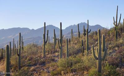Tucson Residential Lots & Land For Sale: 3171 N Placita De Los Andes #13