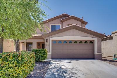 Sahuarita Single Family Home For Sale: 410 E Camino Rancho Seguro