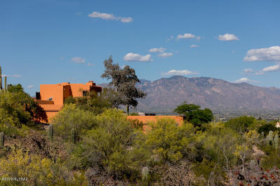 Tucson Single Family Home For Sale: 4910 W Paseo De Las Estrellas