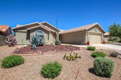 Single Family Home For Sale: 36990 S Ribbonwood Lane