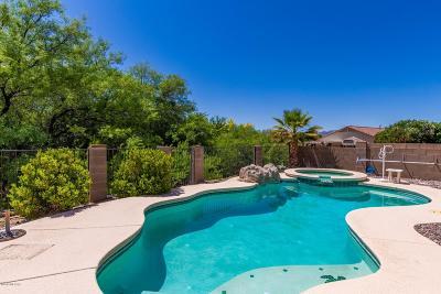 Tucson Single Family Home For Sale: 11245 N Flat Granite Drive