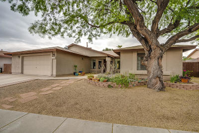 Tucson Single Family Home Active Contingent: 8710 N Moison Drive