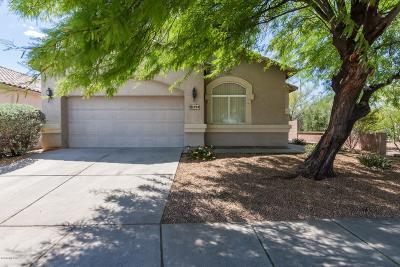 Tucson Single Family Home For Sale: 253 N Desert Park Place