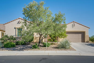 Marana Single Family Home Active Contingent: 12346 N Pathfinder Drive