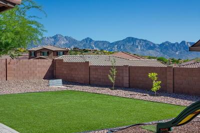 Tucson Single Family Home For Sale: 38882 S Running Roses Lane