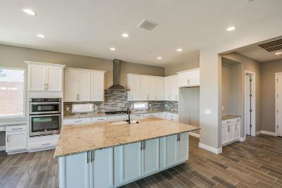 Marana Single Family Home For Sale: 14179 N Hidden Arroyo Pass N