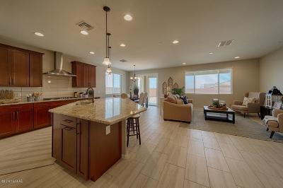 Marana Single Family Home For Sale: 14105 N Silverleaf Lane