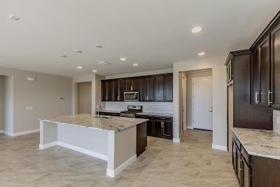 Marana Single Family Home For Sale: 7649 W Laurel Lane