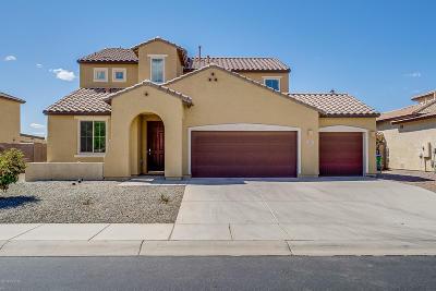 Marana Single Family Home For Sale: 12405 N Starthroat Drive
