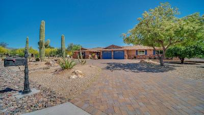 Tucson Single Family Home For Sale: 2881 W Mesa Verde Place