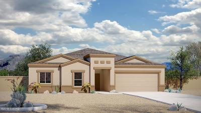 Pima County Single Family Home For Sale: 6228 S Blue Water Drive