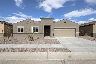 Pima County Single Family Home For Sale: 6237 S Blue Water Drive