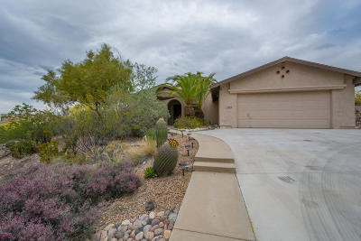 Tucson Single Family Home For Sale: 4670 N Cerritos Drive