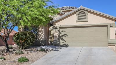 Vail Single Family Home Active Contingent: 10727 S Van Trap Spring Drive