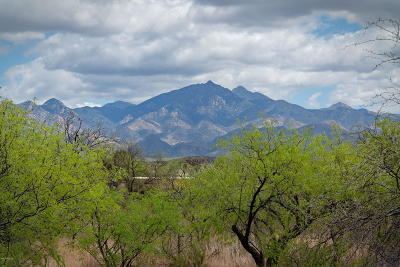 Tubac Residential Lots & Land For Sale: Balderrain #35&36