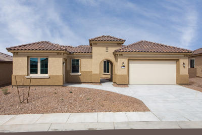 Marana Single Family Home For Sale: 13886 N Rim Trail N