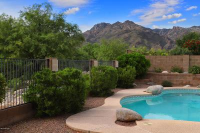 Tucson Single Family Home Active Contingent: 5425 N Ventana Vista Road