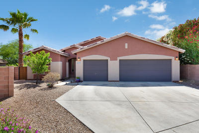 Tucson Single Family Home For Sale: 3269 N Meadow Mine Place