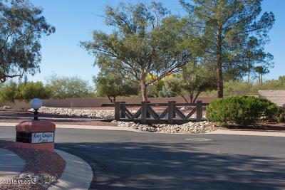 Tucson Townhouse For Sale: 7155 E River Canyon Circle