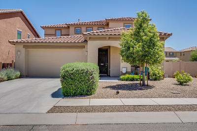 Sahuarita Single Family Home Active Contingent: 815 W Placita Chilpe