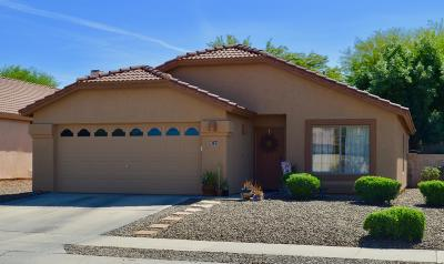 Tucson Single Family Home For Sale: 8734 N Frampton Place