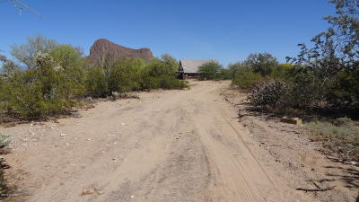 Tucson Single Family Home For Sale: 10510 W Massingale Road
