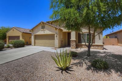 Tucson Single Family Home Active Contingent: 8093 N Circulo El Palmito Drive