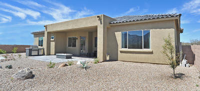 Tucson Single Family Home For Sale: 15120 N Gangarebo Place