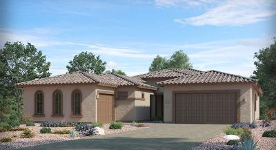 Oro Valley Single Family Home For Sale: 715 W Aviator Crossing Drive