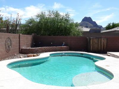 Tucson Single Family Home Active Contingent: 7543 W Crimson Sky Drive