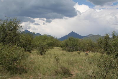 Tubac Residential Lots & Land For Sale: Bond Canyon Road #71