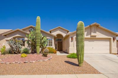 Tucson Single Family Home For Sale: 8832 N Bottlebush Lane