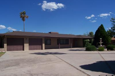 Santa Cruz County Single Family Home For Sale: 1238 E Spa Drive